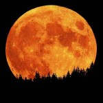 Sacred Full Moon Meditation